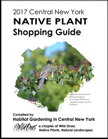 Native Plant Guide