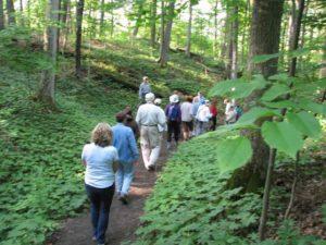 Field trip walk